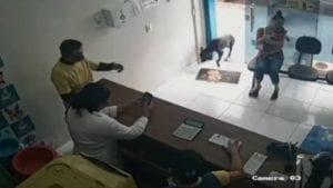 Video perro entra solo a una veterinaria para ser curado