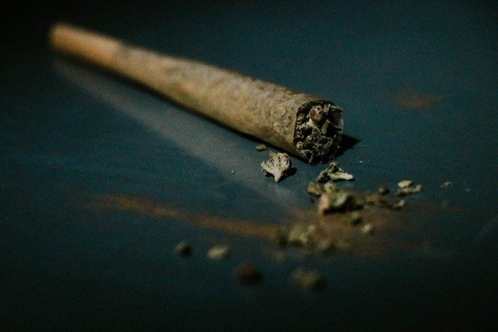 marihuana-legalizacion-mota-corte-cofepris